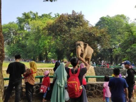 Libur Panjang, Ribuan Pengunjung Serbu Tempat Wisata di DKI