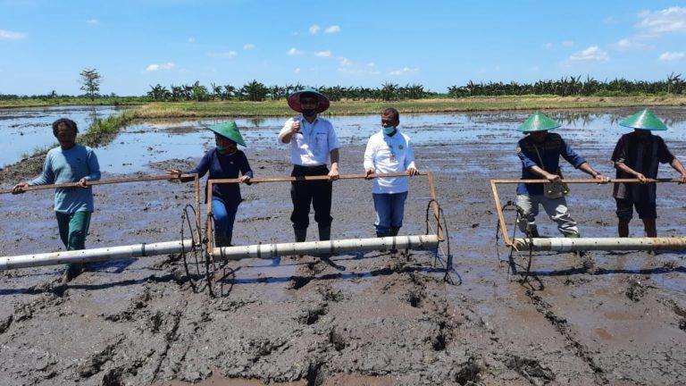 Papua Bertekad Tingkatkan Produksi Pangan Ditengah Pandemi Covid-19