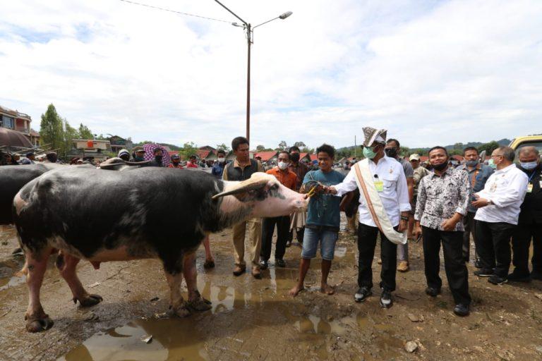 Mentan Syahrul Pantau Aktivitas Jual Beli Pasar Ternak Tallunglipu
