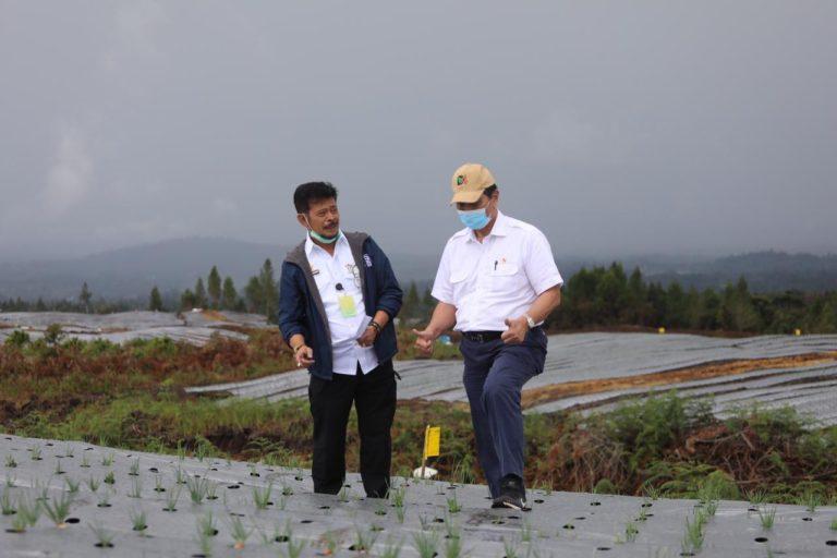 Dampingi Luhut Tinjau Perkembangan Food Estate Humbahas, Mentan SYL: Januari InsyaAllah Penanaman Sudah Selesai