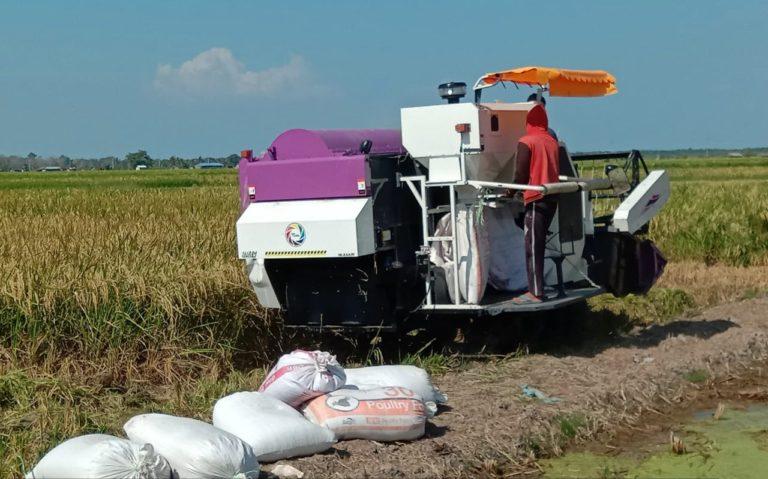 Berkat Bantuan Kementan, UPJA Karya Bersama Demak Sukses Kelola Mesin Panen