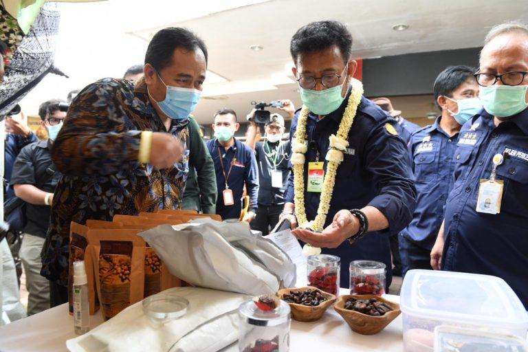 Menteri SYL Dua Kali Lepas Ekspor Dalam Sehari, Hadirkan Efisiensi Berusaha di Tengah Pandemi