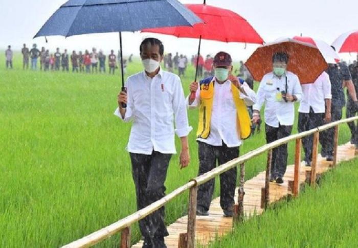 Bertolak ke NTT, Jokowi Tinjau Lumbung Pangan Seluas 5.000 Hektare