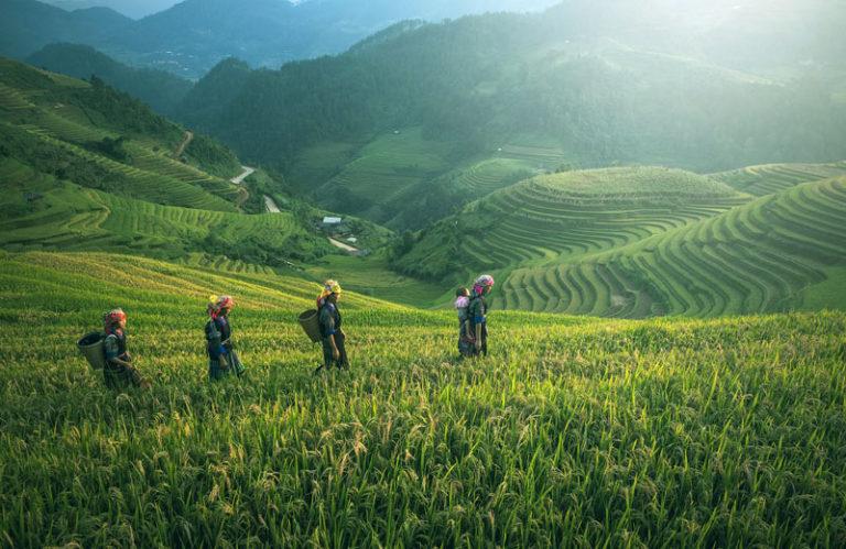 Fokus Program Percepatan Reforma Agraria