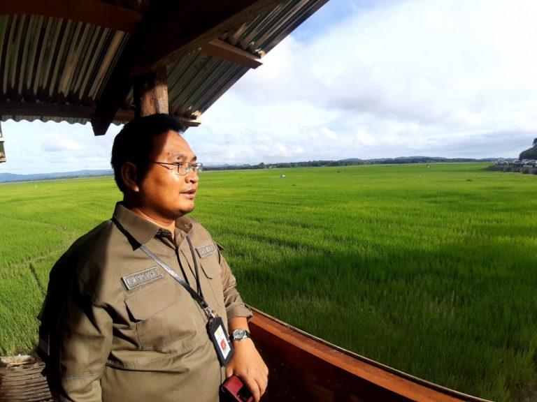 Kementan: Tugas Kami Menjaga Produksi dan Kesejahteraan Petani