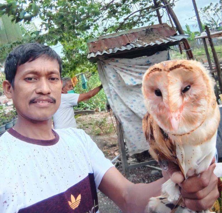 Kementan Galakkan Rubuha untuk Kendalikan Hama Tikus