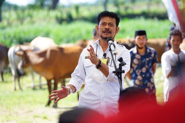 Mentan Dorong Kabupaten Jeneponto Jadi Sentra Pertanian dan Peternakan Berkualitas