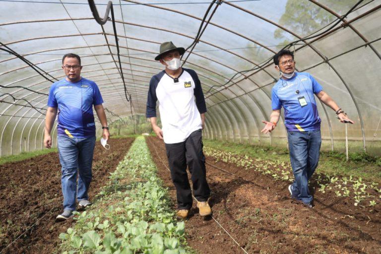 Pemerintah Gandeng IPB Wujudkan Korporatisasi Sektor Pertanian