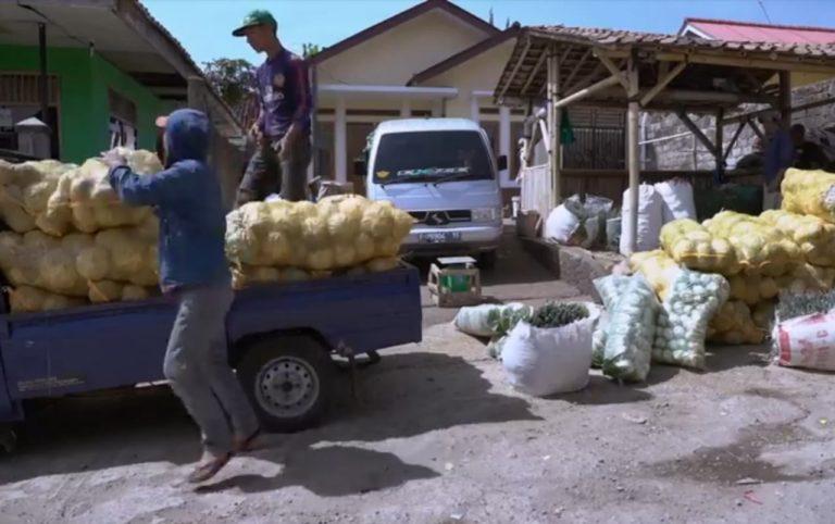 Kementan Komitmen Turunkan Food Loss and Waste