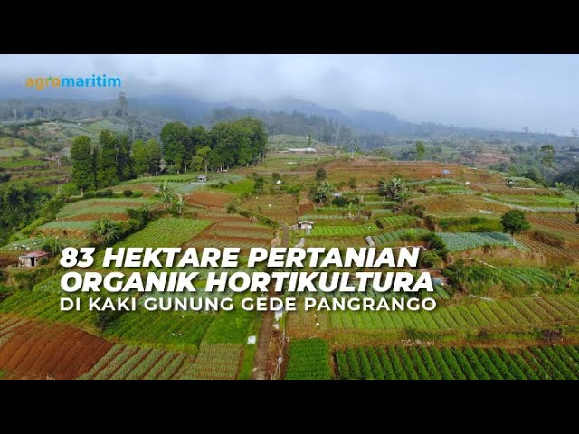 Pertanian Organik dengan Aplikasi Pupuk Hayati Cair ExtraGen di Kaki Gunung Gede Pangrango