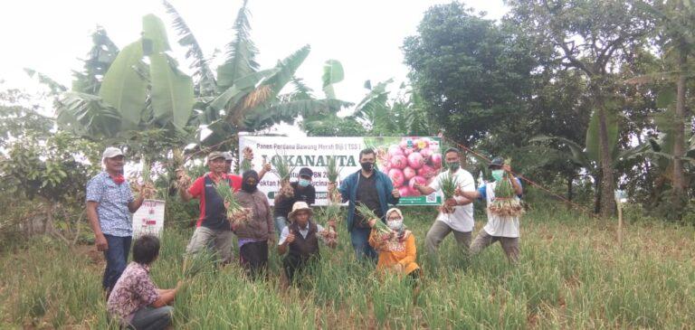 Kementan Ajak Petani Tanam Bawang Merah Biji TSS