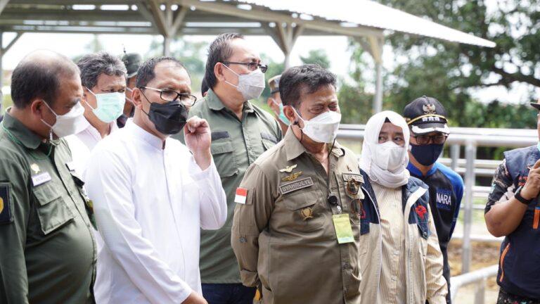 Mentan Syahrul Tinjau Kesiapan Kurban di Kota Makassar