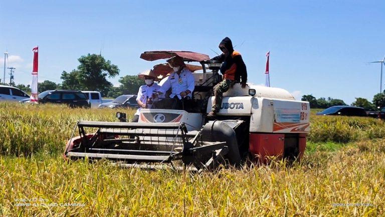 Program OPIP Sukses Tingkatkan Produksi Panen Kabupaten Muara Enim