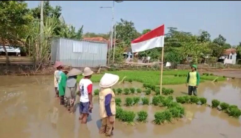Unik dan Khidmat, Petani Binaan ExtraGen di Pekalongan gelar Upacara Bendera di Tengah Sawah