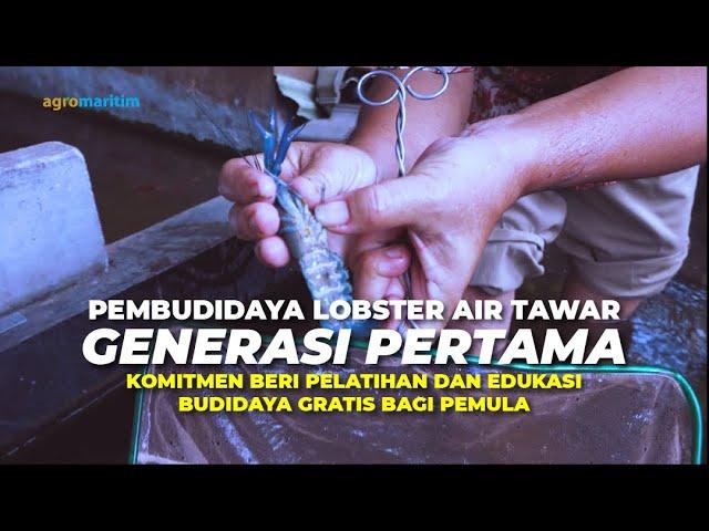 Guru Inspiratif, Sukses Budidaya Lobster Air Tawar dari Nol