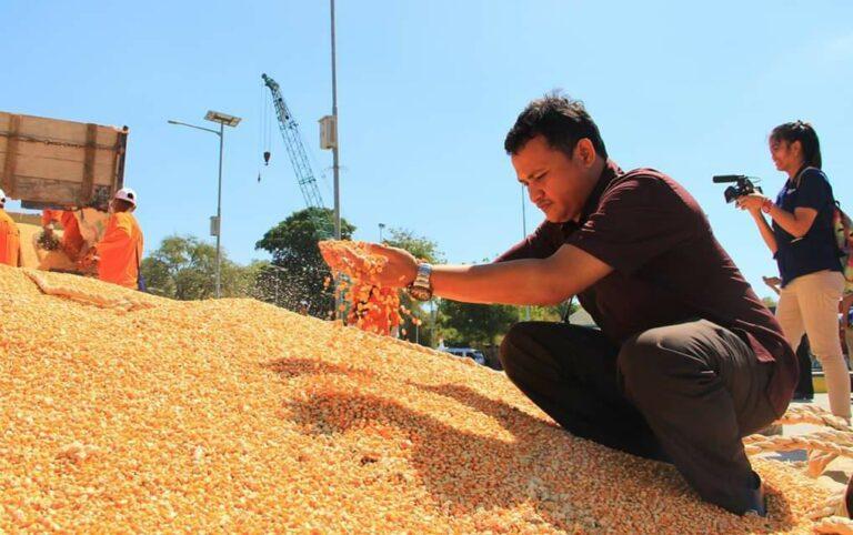 Produksi Jagung Cukup, Akademisi IPB: Jangan Sampai Impor