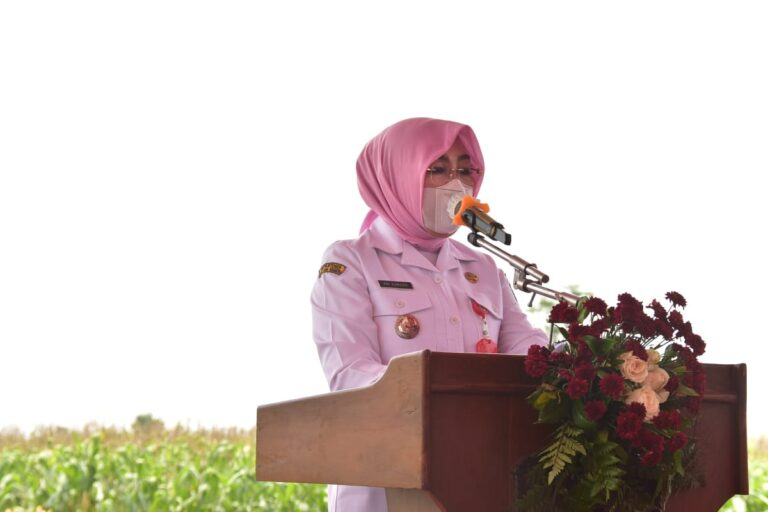 Bupati Grobogan: Biarkan Petani Nikmati Hasil Panen, Jangan ada Impor!