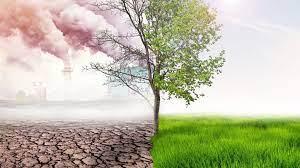 Optimalisasi Pendanaan Lingkungan dan Perubahan Iklim di Daerah